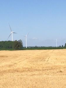 Wind turbines and straw